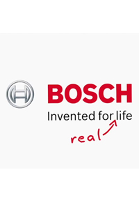 Bosch:<br>What David really saw